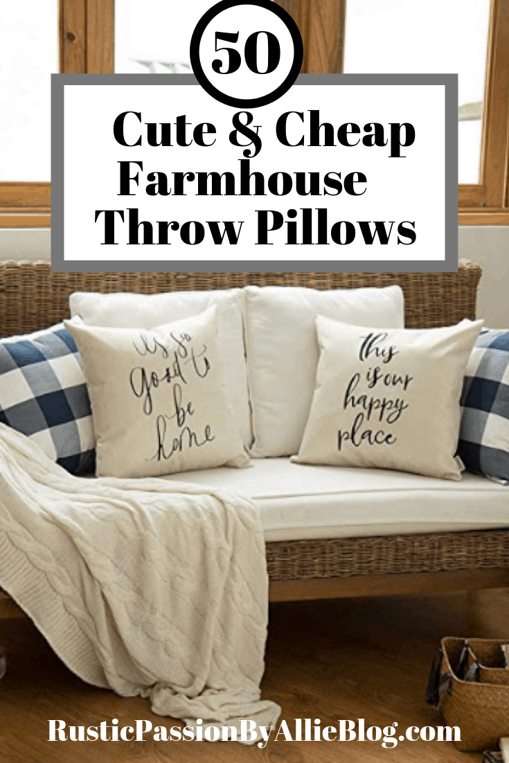 Astonishing 50 Farmhouse Pillows For Cheap You Will Want Them All Inzonedesignstudio Interior Chair Design Inzonedesignstudiocom
