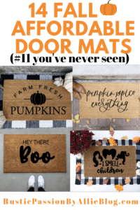 4 fall door mats with text overlay - 14 fall affordable door mats #11 you've never seen.