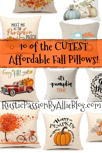 Fall Throw Pillow - Farmhouse Throw Pillow - Pumpkin Pillow - Cheap Farmhouse Pillows - Affordable Farmhouse Pillows