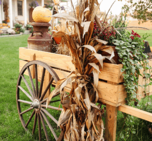 Wagon filled with fall decor Fall decorations for the porch